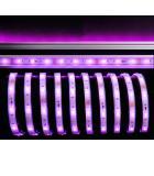 LED Stripe RGB 5m 12V IP67 150 LEDs