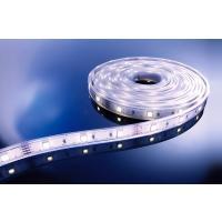 LED Stripe CW 5m 12V IP67 150 LEDs
