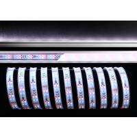 LED Stripe 3528-2x72-12V-RGB+6000K-5m-IP65