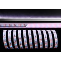 LED Stripe 3528-2x72-12V-RGB+3000K-5m-IP65