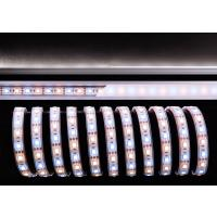 LED Stripe 5050-60-12V-3000K+6500K-5m-IP67