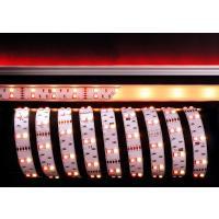 LED Stripe 5050-2x30-12V-RGB+3000K-3m-IP20