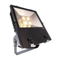 LED Outdoor Fluter COB 200W WW