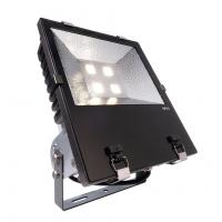LED Outdoor Fluter COB 200W NW