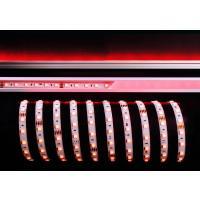 LED Stripe RGB+NW 5m 24V IP20 300 LEDs