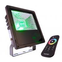 LED Outdoor Fluter RF II 30W RGB