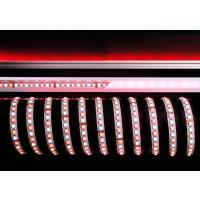 LED Stripe 5050-96-24V-RGB+6200K-5m-IP20