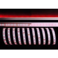 LED Stripe 5050-96-24V-RGB+6200K-5m-IP67