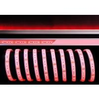 LED Stripe 5050-60-12V-RGB-5m-IP67