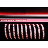 LED Stripe 5050-60-24V-RGB-5m-IP20