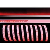 LED Stripe 5050-60-24V-RGB-5m-IP67