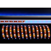 LED Stripe 5050-30-12V-RGB-5m-IP20
