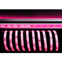 LED Stripe 5050-30-24V-RGB-5m-IP33