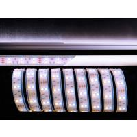 LED Stripe CW+WW 3m 12V IP67 180 LEDs