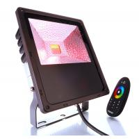 LED Outdoor Fluter RF 60W RGB