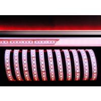 LED Stripe 5050-96-24V-RGB+4200K-5m-IP67